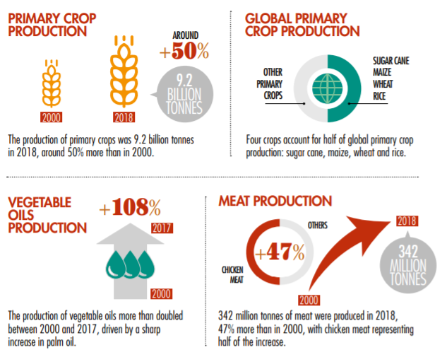 Figures showing that total production of primary crops has increased by almost 50% between 2000 and 2018.